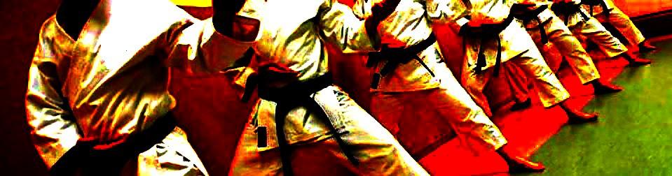 17. Januar 2015 – Karate Velbert